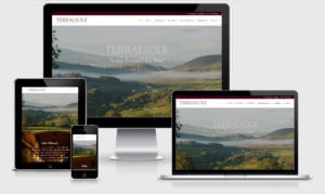 Websites for Wineries - Big Max's Studio