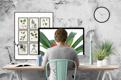 Big Max's Studio's - Single Page Website Design