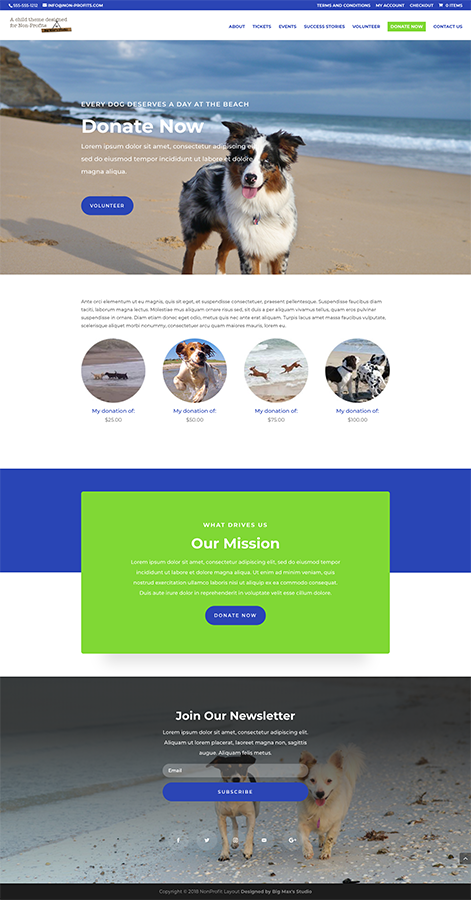 Sample Donation page - nonProfit Divi Child Theme