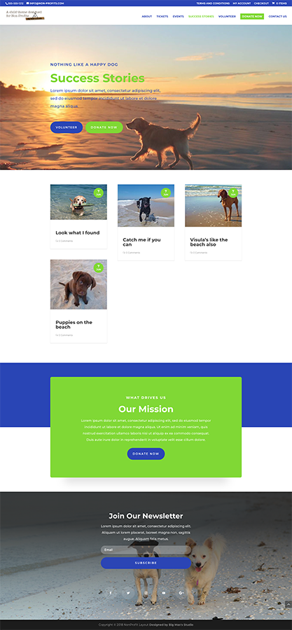 Sample Blog page - nonProfit Divi Child Theme
