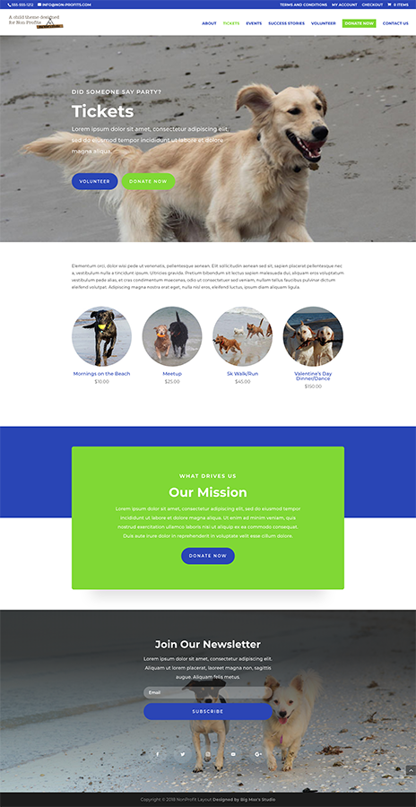 Sample Ticket page - nonProfit Divi Child Theme