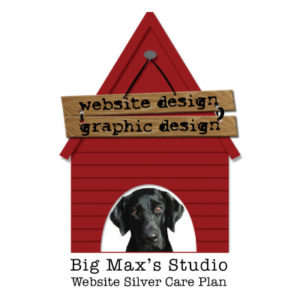 Website Silver Plan - Big Max's Studio