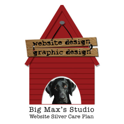 Website Silver Plan - Big Max's Studio