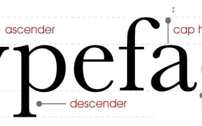 Typography; a wonderful world of typefaces for everyone