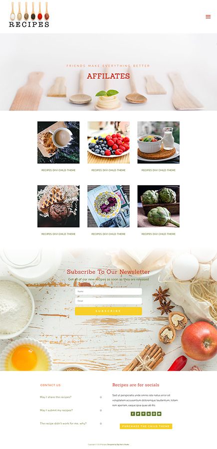 Sample of Affilates pages for Recipes Divi Child Theme