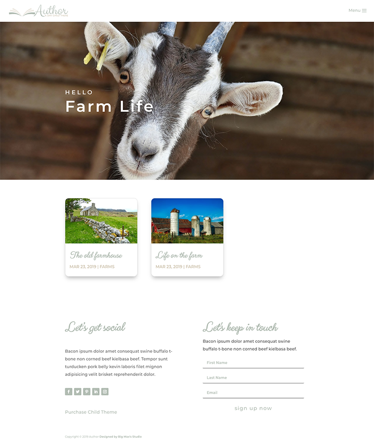 Sample Cagetory page - Author Divi Child Theme